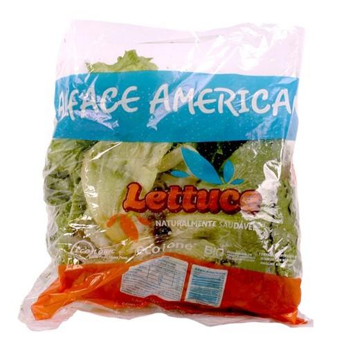 Alface Americana Lettuce Maco