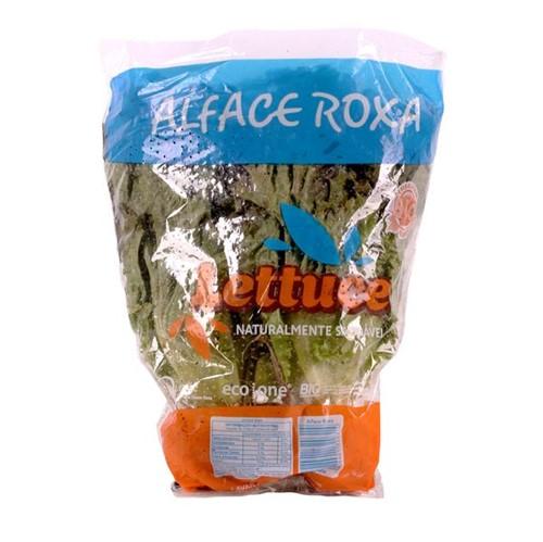 Alface Roxa Lettuce Mc