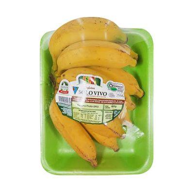 Banana Prata Orgânica 800g - Solo Vivo