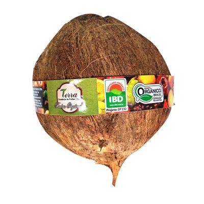 Coco Seco Orgânico 600g - Terra Frutas Orgânicas