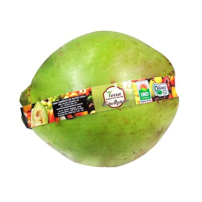 Coco Verde Orgânico - Terra Frutas Orgânicas