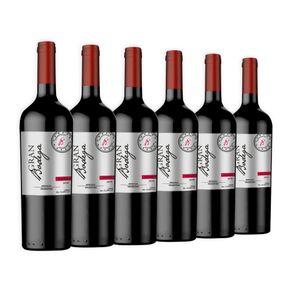 Kit de Vinhos Importados Argentino 6 Garrafas Tinto 750ml