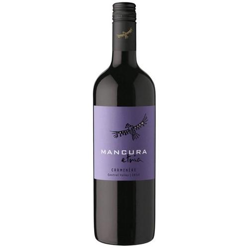 Vinho Chileno Mancura Etnia 750ml Carmenere